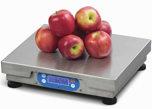 Brecknell 6700U Series Electronic Bench Scale- BS-6720U-30 - 30 lb x 0.01