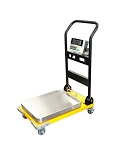 CAS CWP Series Portable Platform scale