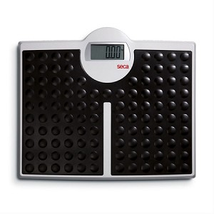 seca 813 (8131321009) High Capacity Digital Flat Scale